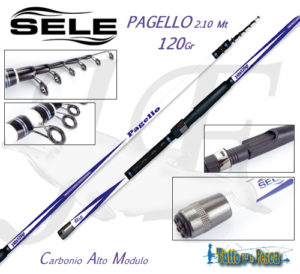 CANNA DA BARCA PAGELLO SELE 2.10 MT